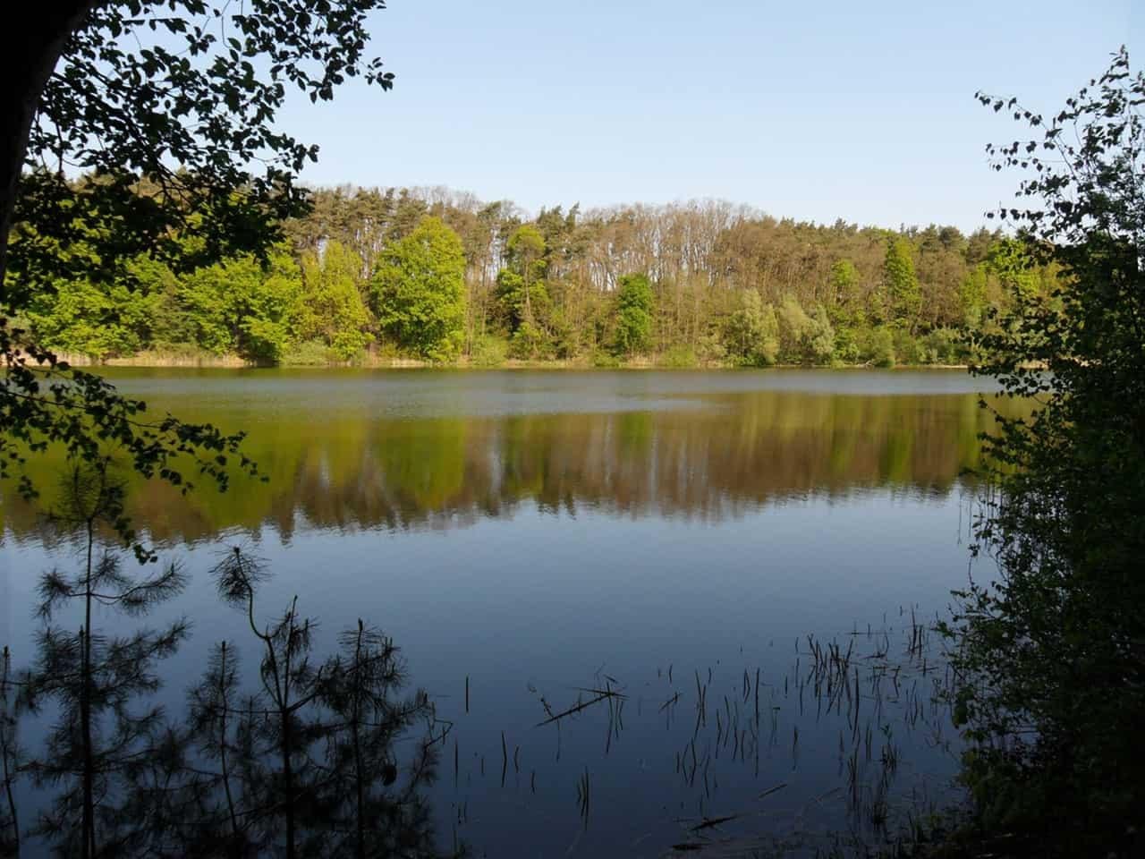 Landkreis Oder